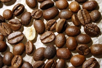 coffee-seeds-1193169